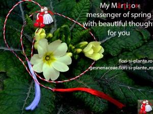 Martisor for you